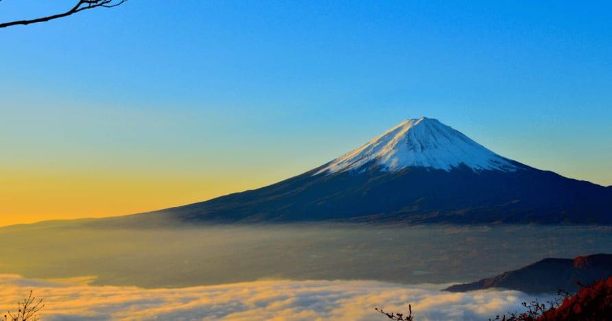 Япония считает удержанные налоги с выигрышей иностранца,